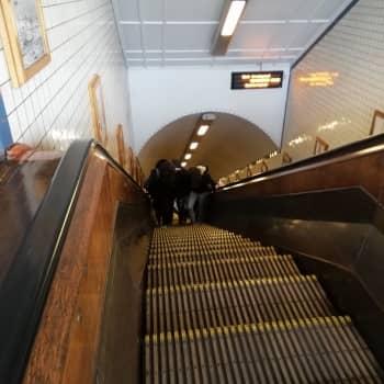 Bezoek Antwerpen